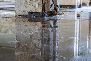 Liquor Store Insurance - Messy Dirty Flooded Store Front Floor